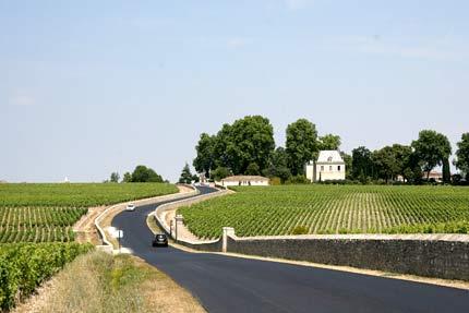 виноградники в Бордо